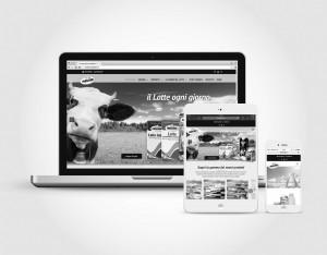 Frascheri (sezione WEB)